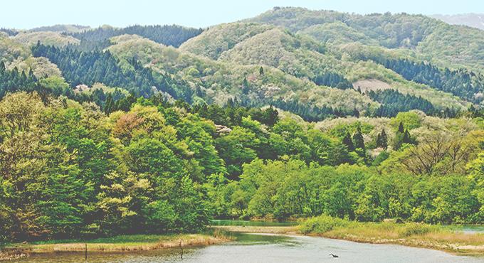 日本の地方の風景